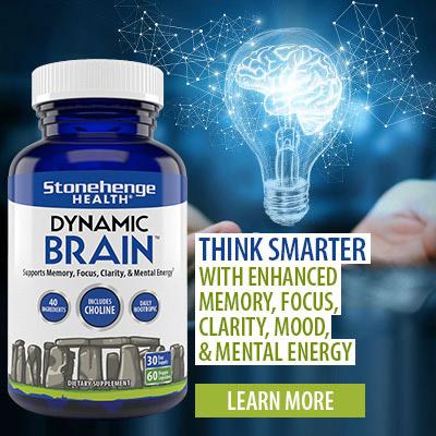 Dynamic Brain
