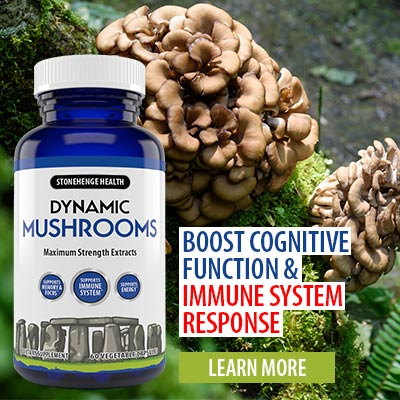 Dynamic Mushrooms