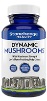 DYNAMIC MUSHROOMS